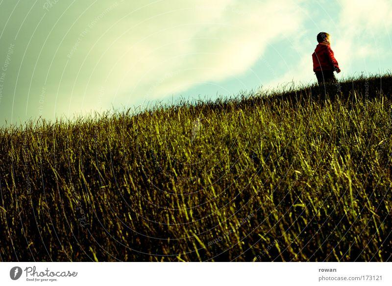 bergauf Mensch Kind grün rot Wolken Junge Wiese Spielen Gras Park gehen maskulin Kleinkind