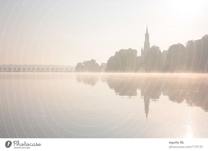 Morgenstund hat Gold im Mund Wasser schön Himmel Brandenburg See Landschaft hell Küste Nebel Horizont Kirche Seeufer Schönes Wetter traumhaft