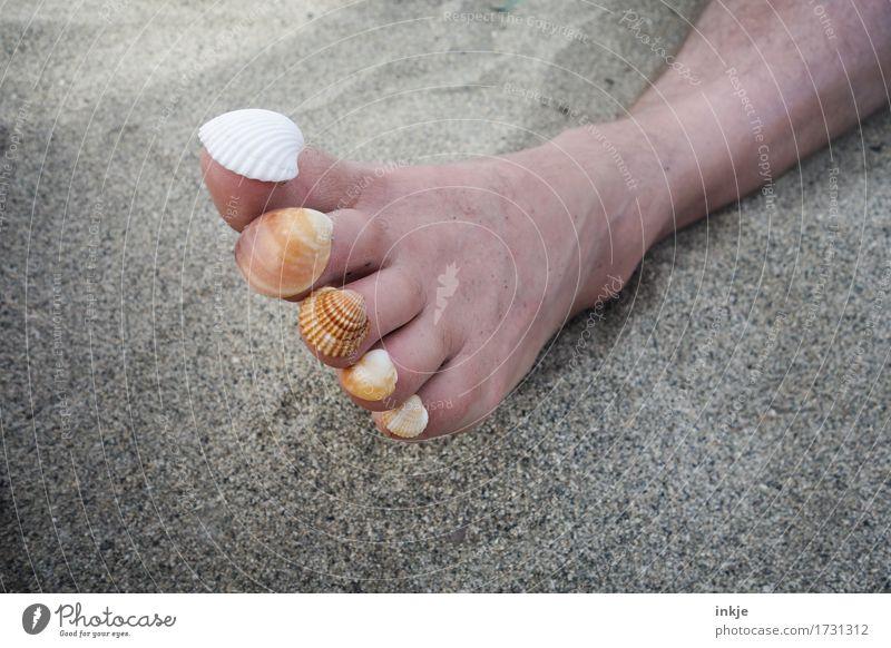 Zeit zum Sammeln ||| harmonisch Sinnesorgane Erholung ruhig Freizeit & Hobby Ferien & Urlaub & Reisen Sommer Sommerurlaub Sonne Sonnenbad Strand Erwachsene