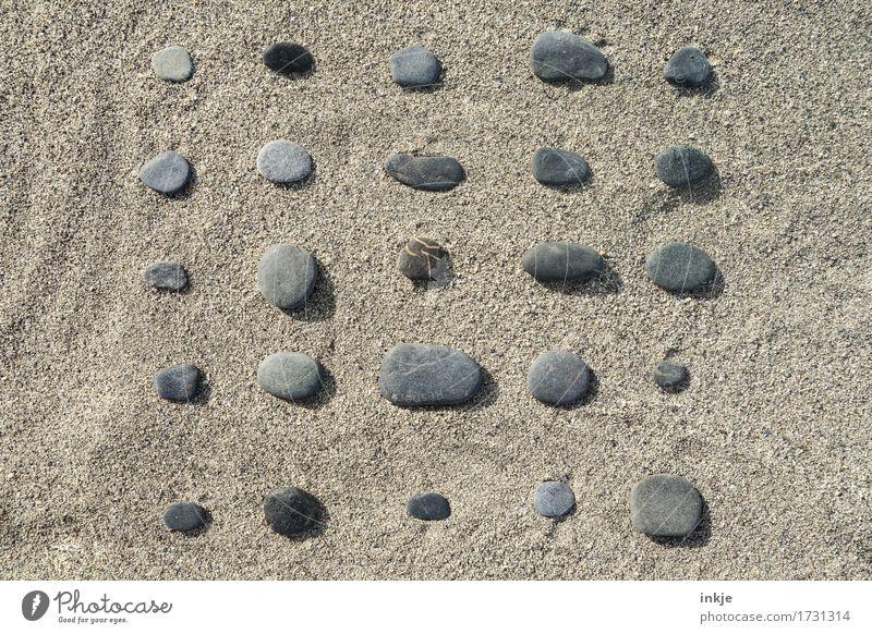 Zeit zum Sammeln || Freizeit & Hobby Ferien & Urlaub & Reisen Sommer Sommerurlaub Sonne Strand Sand Schönes Wetter Sammlung Super Stillleben Sandstrand