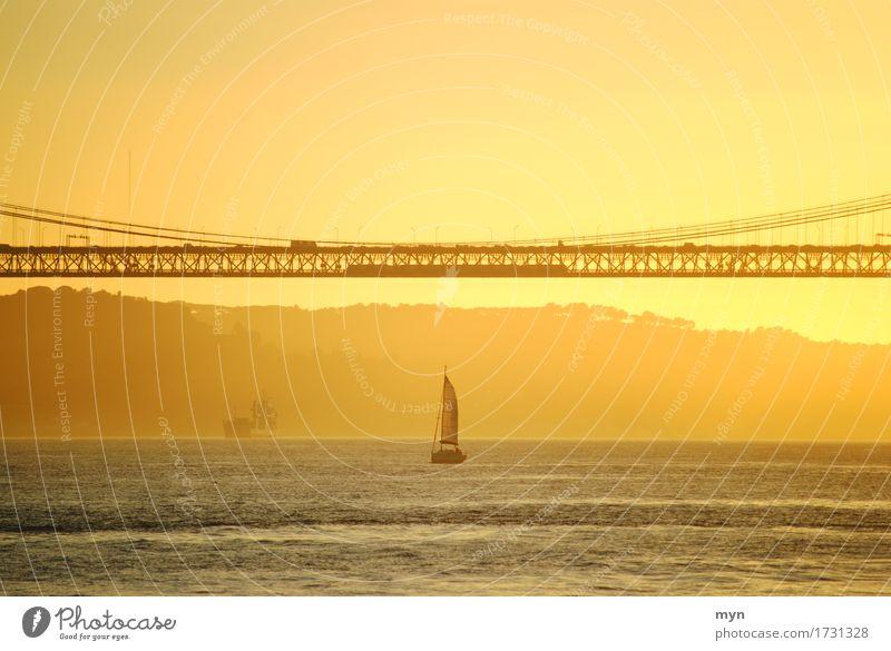 Liquid Gold Natur Ferien & Urlaub & Reisen Sommer Wasser Meer ruhig Ferne Wärme gelb Küste Freiheit Stimmung orange Tourismus Wasserfahrzeug Horizont