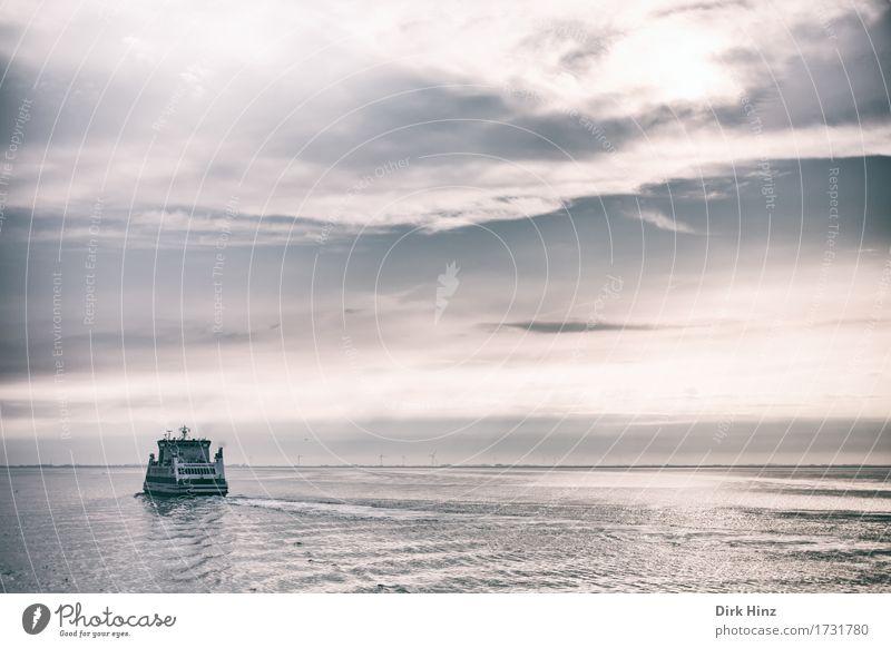 Abendfähre nach Amrum Natur Ferien & Urlaub & Reisen Sommer Wasser Sonne Landschaft Meer Wolken Ferne Umwelt Küste Lifestyle Freiheit Tourismus Horizont Verkehr