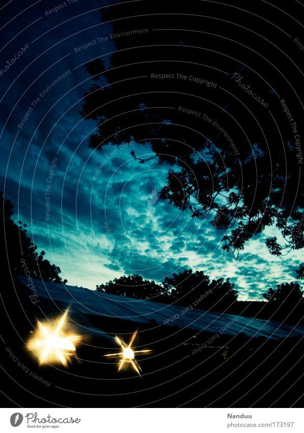 Kein Sternenhimmel Farbfoto Außenaufnahme Menschenleer Textfreiraum oben Dämmerung Gegenlicht Wolken Sonnenaufgang Sonnenuntergang Baum blau Sommerabend