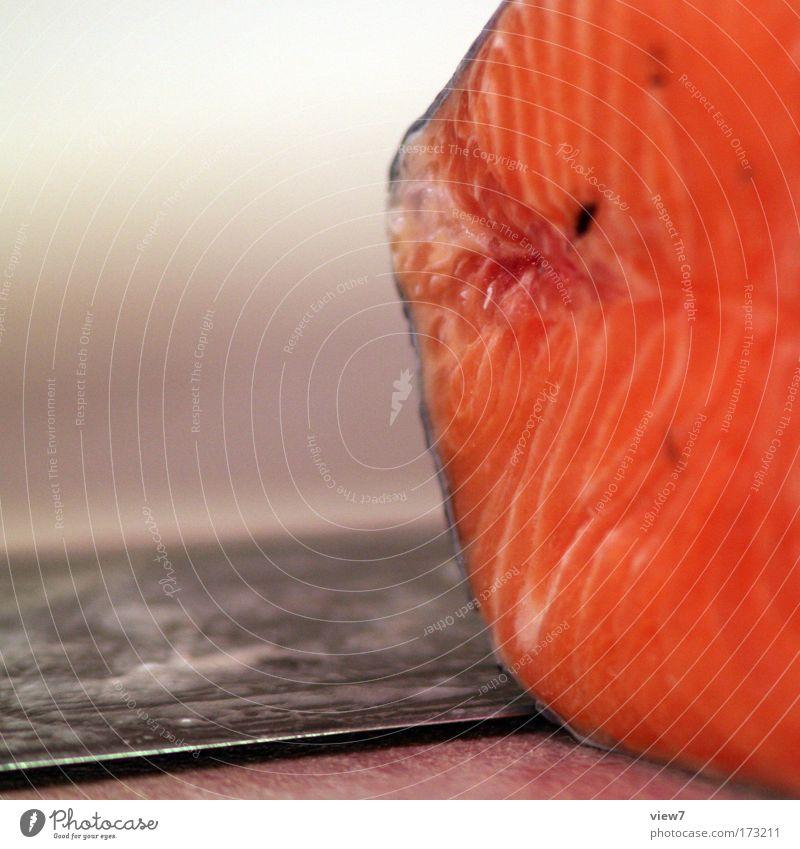 Lachs Farbfoto mehrfarbig Innenaufnahme Makroaufnahme Menschenleer Textfreiraum links Schwache Tiefenschärfe Lebensmittel Fisch Ernährung Besteck Messer frisch
