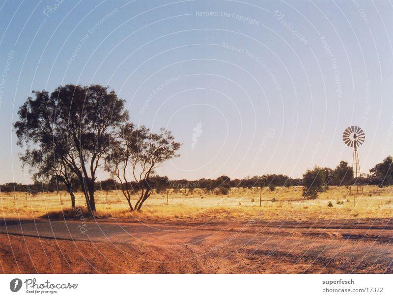 oz-ranch Baum Sand Bauernhof Australien Staub Outback Ranch