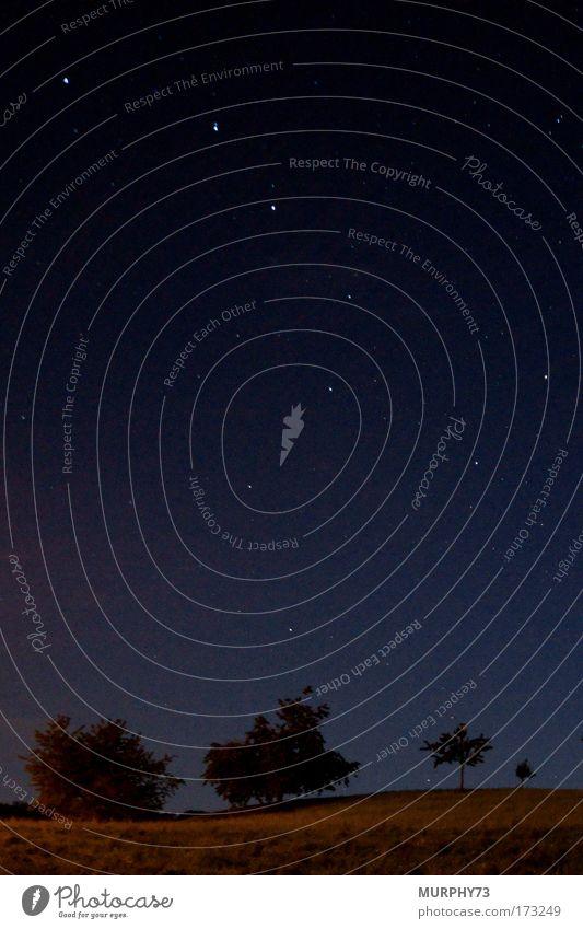 Sternenhimmel oder der grosse Wagen Farbfoto Außenaufnahme Textfreiraum oben Textfreiraum unten Hintergrund neutral Nacht Schatten Silhouette Lichterscheinung