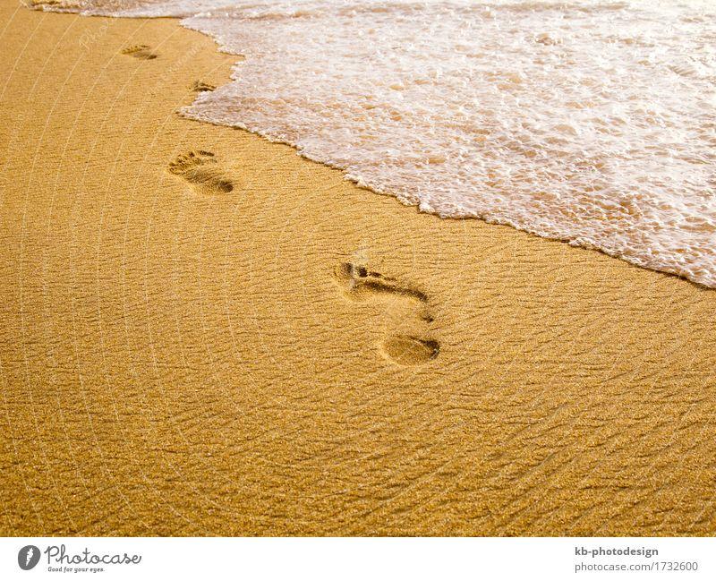 Footprints at the beach Erholung Ferien & Urlaub & Reisen Ferne Sommer Sommerurlaub Strand Sand gehen genießen wave waves foam spum sunny stressed footprint