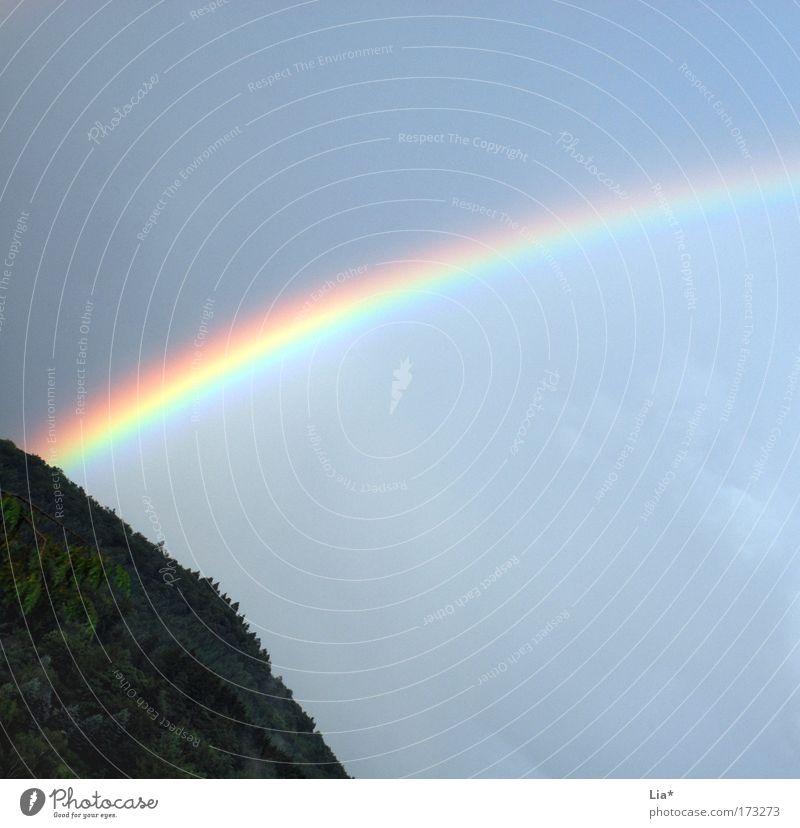 Lichterscheinung Farbfoto Außenaufnahme Sonnenlicht Himmel Regen leuchten mehrfarbig Hoffnung Endzeitstimmung Klima Optimismus Regenbogen regenbogenfarben