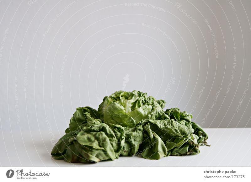 Unfresh alt Pflanze Blatt natürlich Lebensmittel Ernährung Vergänglichkeit Müll Gemüse trocken Verfall vertrocknet Ekel verdorben Dürre verblüht