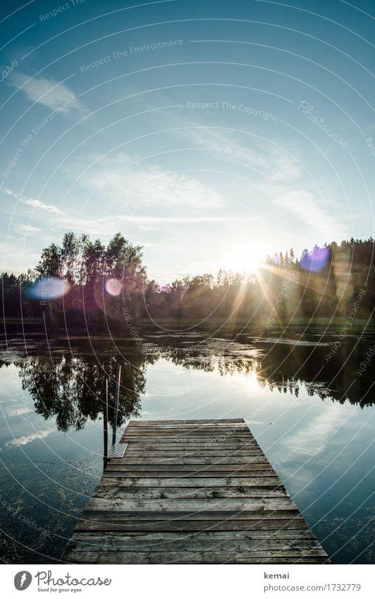Der Steg Himmel Natur Ferien & Urlaub & Reisen Sommer schön Baum Landschaft Erholung Wolken ruhig Umwelt Holz Freiheit See Zufriedenheit glänzend