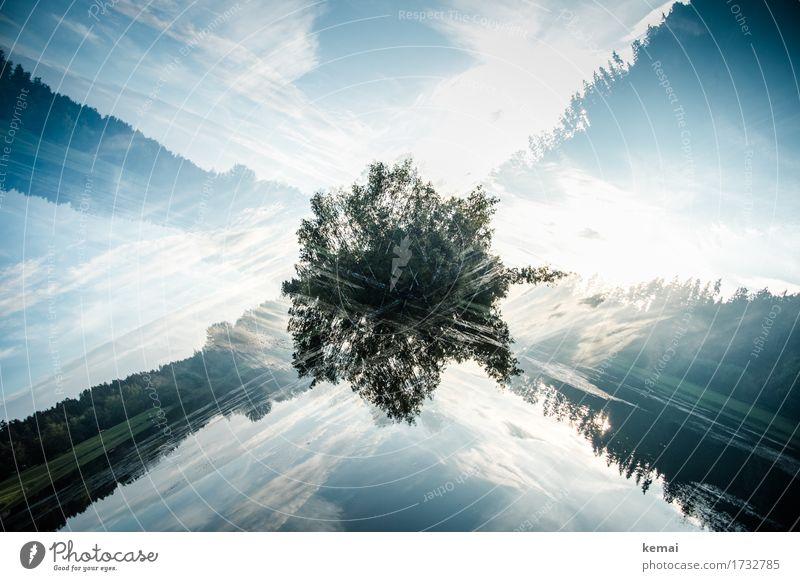 Insel Abenteuer Freiheit Umwelt Natur Landschaft Pflanze Himmel Wolken Sommer Schönes Wetter Baum See Wasseroberfläche außergewöhnlich dunkel verrückt wild blau