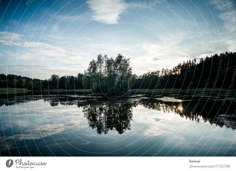 Wenn die Mücken schlafen harmonisch Wohlgefühl Zufriedenheit Sinnesorgane Erholung ruhig Abenteuer Freiheit Umwelt Natur Landschaft Pflanze Wasser Himmel Wolken