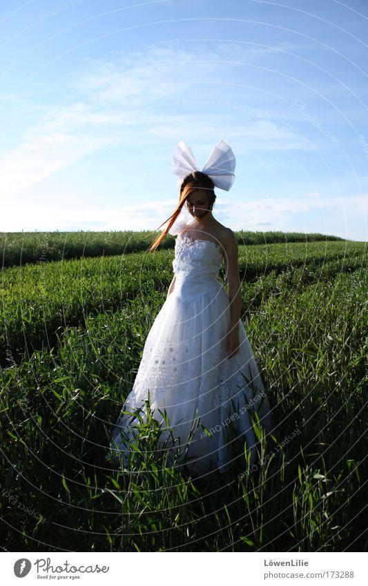 AnimeBraut Mensch Himmel Jugendliche Sommer Wolken Einsamkeit feminin Landschaft Gras Traurigkeit Feld warten Hochzeit stehen Sehnsucht Schönes Wetter