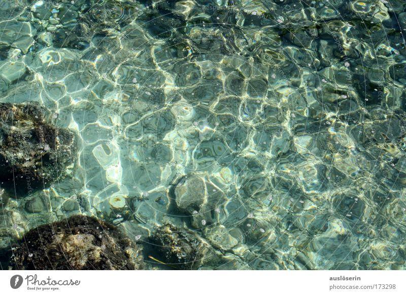 Klarsicht Wasser Sonne Meer blau Sommer Ferien & Urlaub & Reisen Farbe Leben Küste Wellen Umwelt Felsen Sauberkeit tauchen Flüssigkeit Bucht