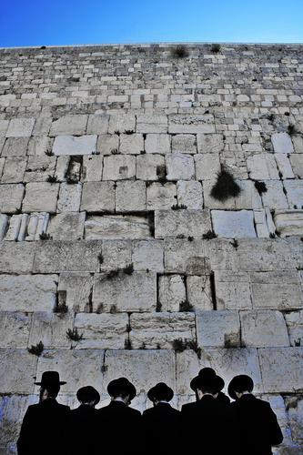 Mensch Mann Erwachsene Wand Mauer Religion & Glaube Menschengruppe Kopf Tourismus Rücken hoch Ausflug exotisch Altstadt Städtereise