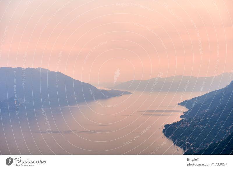 blaue stunde I Ferien & Urlaub & Reisen Ferne Freiheit Berge u. Gebirge Umwelt Natur Landschaft Pflanze Urelemente Himmel Sommer Wetter See Lago Maggiore