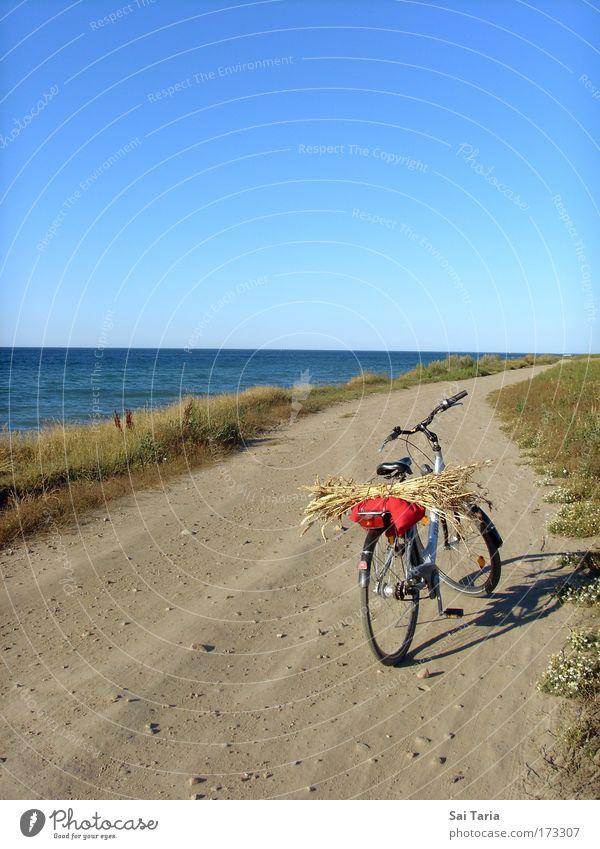 Fahrradtour Freude Ferien & Urlaub & Reisen Landschaft fahren Gelassenheit Sommerurlaub
