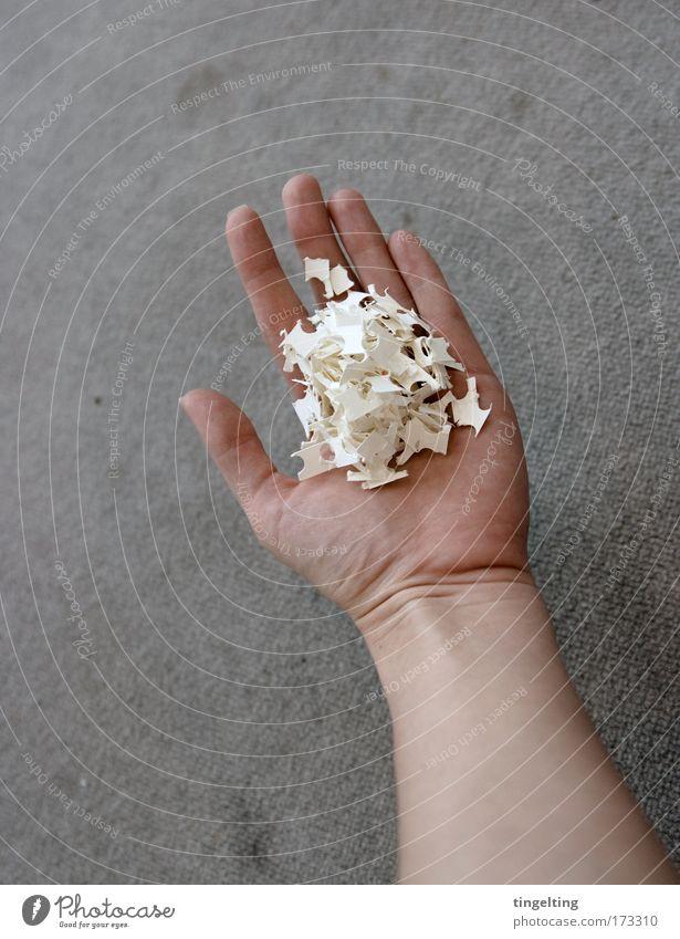 hand voll Design feminin Arme Hand Finger Schnipsel Papier Arbeit & Erwerbstätigkeit bauen einfach grau weiß ruhig fleißig Haut Teppich aufsammeln aufräumen
