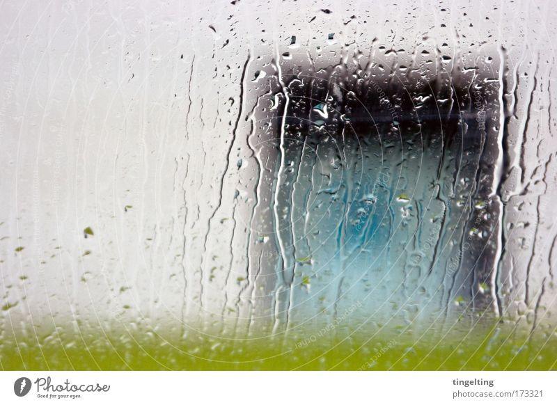 regen regen Farbfoto Außenaufnahme Experiment Menschenleer Textfreiraum links Ausstellung Wasser Wassertropfen schlechtes Wetter Regen Gras Wiese Mauer Wand