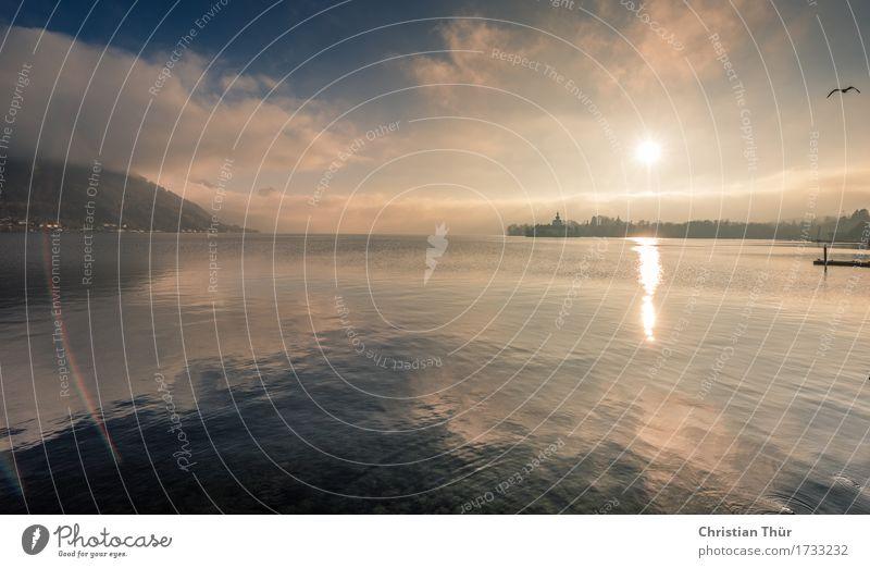 Gmunden / Traunsee Natur Ferien & Urlaub & Reisen Wasser Landschaft Erholung Wolken ruhig Ferne Winter Berge u. Gebirge Umwelt Leben Freiheit Schwimmen & Baden