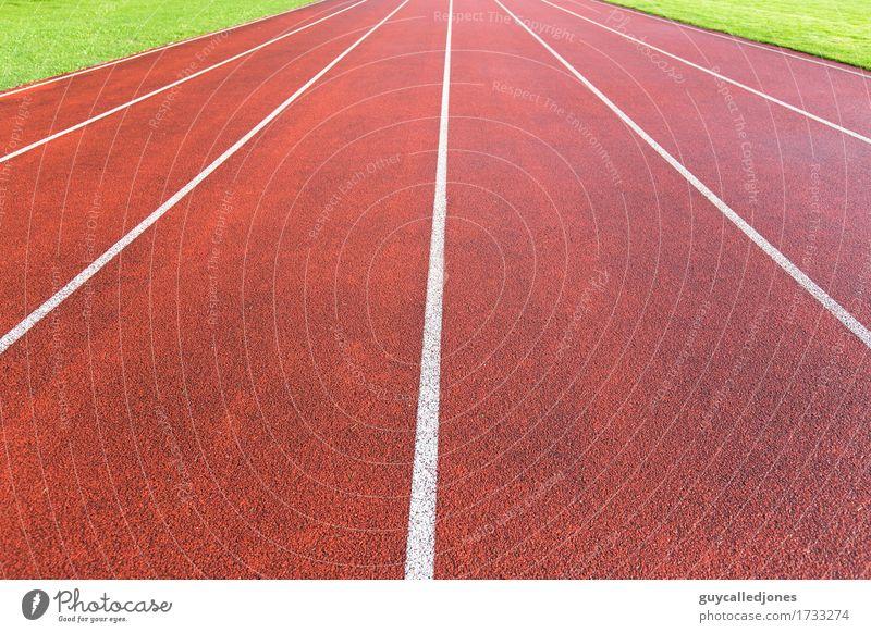 Laufbahn grün rot Freude Leben Sport Lifestyle Gesundheit Zusammensein Freizeit & Hobby frisch Kraft Erfolg laufen Geschwindigkeit Fitness Wellness