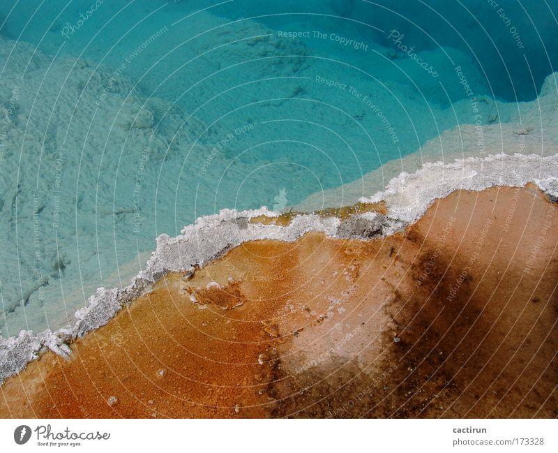 Mineralwasser Natur Wasser blau braun Montana Urelemente bizarr Vulkan Nationalpark Berge u. Gebirge Heisse Quellen Yellowstone Nationalpark Geysirbecken
