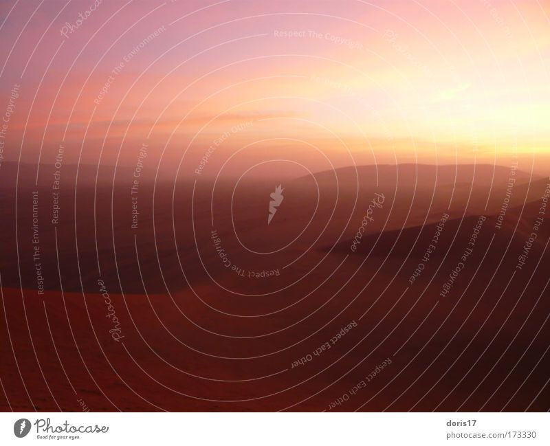 Namib Dessert Natur Himmel Sonne rot gelb Wärme Sand Landschaft braun gold groß ästhetisch Sonnenstrahlen Wüste Unendlichkeit natürlich