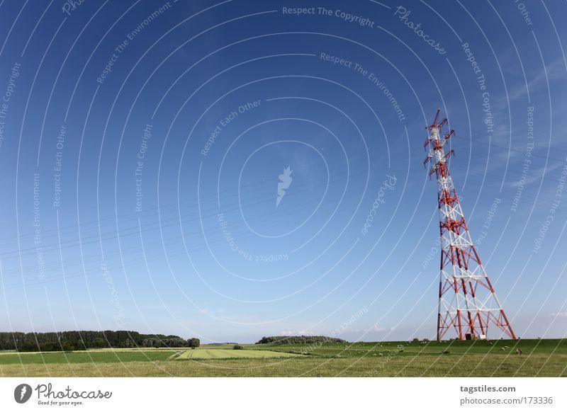 IF YA WIT'ME LET ME HEAR YA SAY MÄÄÄÄÄÄH! Himmel blau Ferne Wiese Landschaft Elektrizität Weide Schaf Strommast flach Mast Hochspannungsleitung Deich platt
