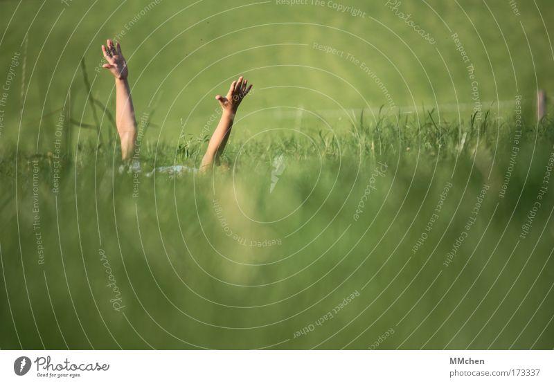 with arms wide open Natur Hand grün Erholung Wiese Spielen Gras träumen Luft Zufriedenheit Arme Wind Umwelt liegen Lebensfreude Kindheit