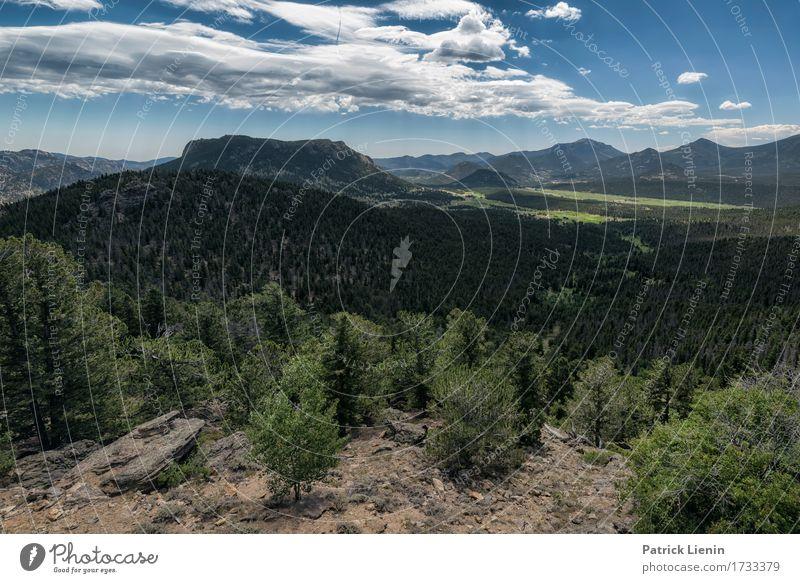 Waldschlucht schön Ferien & Urlaub & Reisen Tourismus Abenteuer Sommer Berge u. Gebirge Umwelt Natur Landschaft Himmel Wolken Klimawandel Wetter Baum Park Wiese