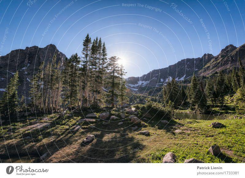 Eagles Nest Wilderness Himmel Natur Ferien & Urlaub & Reisen Sommer schön Sonne Baum Landschaft Wald Berge u. Gebirge Umwelt natürlich Felsen Tourismus wild