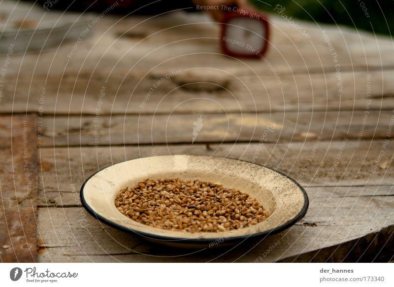 popcorn Farbfoto Außenaufnahme Nahaufnahme Detailaufnahme Menschenleer Textfreiraum Mitte Tag Unschärfe Schwache Tiefenschärfe Zentralperspektive Lebensmittel