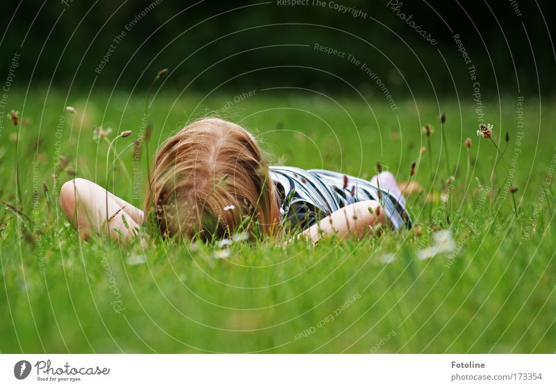 Relax Mensch Kind Natur blau grün Mädchen Sommer ruhig Erholung Umwelt Wiese Landschaft Gras Wärme hell Kindheit