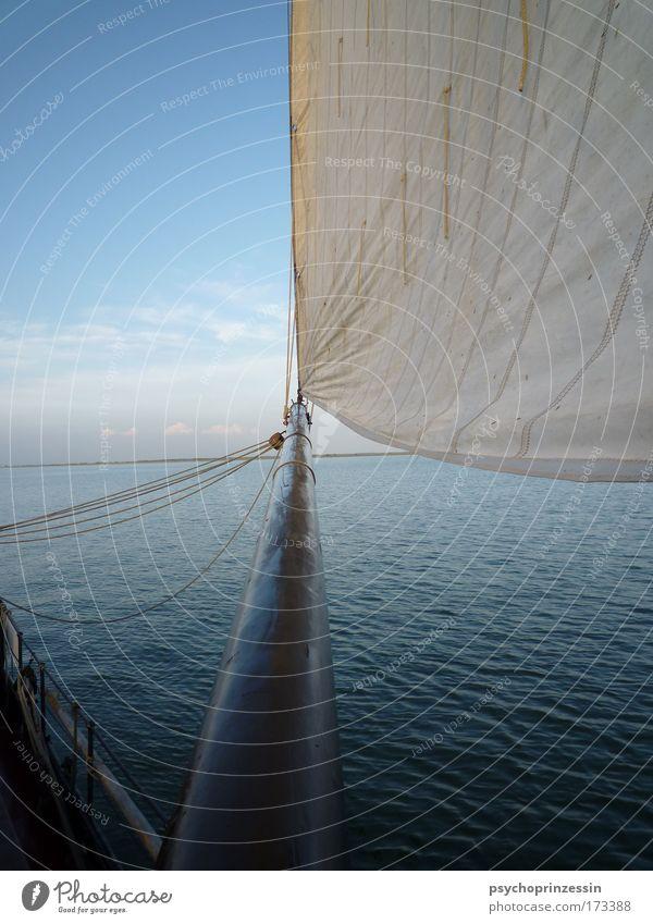 Horizonterweiterung Farbfoto Außenaufnahme Menschenleer Textfreiraum links Tag Dämmerung Kontrast Zentralperspektive Segeln Schifffahrt Wasserfahrzeug Segelboot