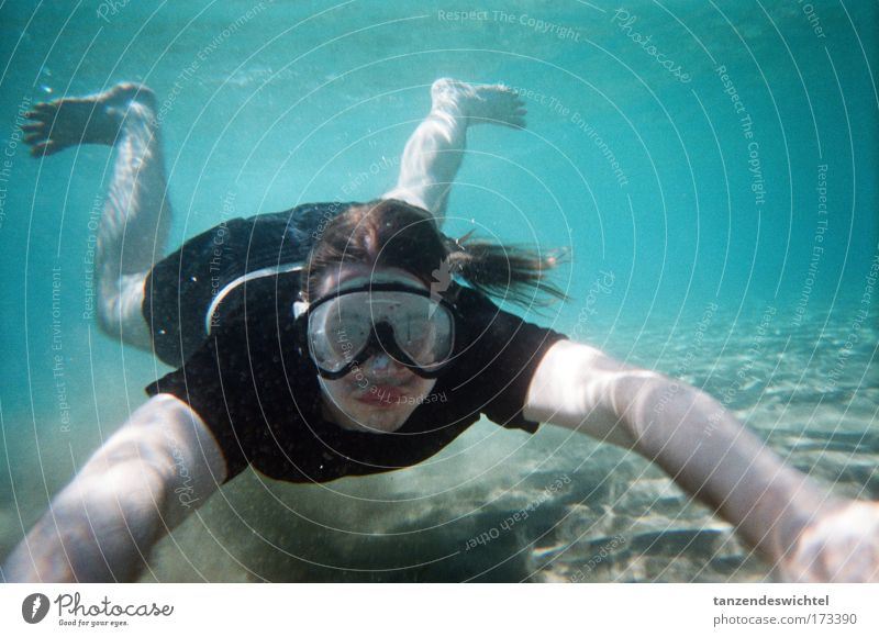 Der schwarz-weiße Hai Farbfoto Unterwasseraufnahme Ganzkörperaufnahme Blick in die Kamera Mensch maskulin Natur Sand Wasser Sonnenlicht Wellen Strand Meer