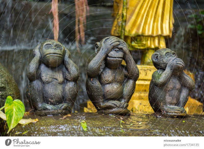 Affen Statuen Ferien & Urlaub & Reisen Tourismus Berge u. Gebirge Kunst Kultur Architektur historisch gold Religion & Glaube Tradition Wat Saket Thailand