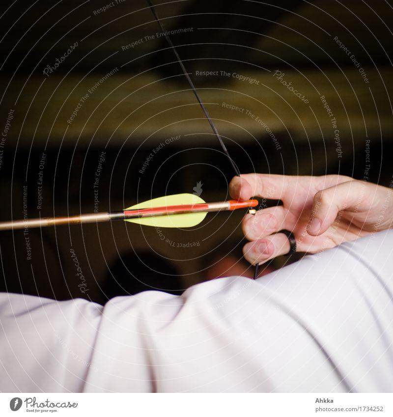 anvisieren Fitness Spielen Jagd Hochzeit maskulin Hand Finger 1 Mensch Ring Ringfinger Pfeil festhalten kämpfen Erfolg frisch weiß Genauigkeit Geschwindigkeit