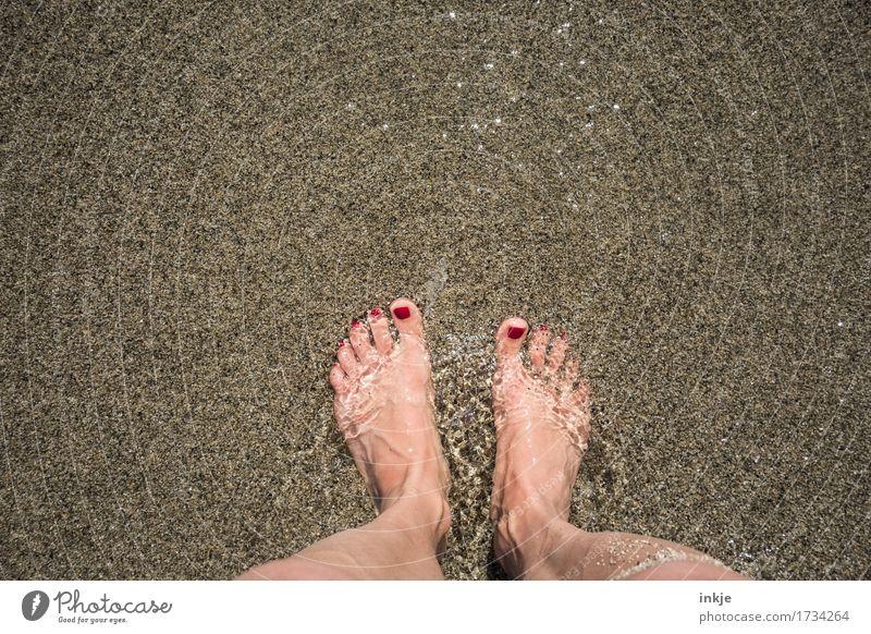 kleine Strömung schön Körperpflege Pediküre Wellness Sinnesorgane Freizeit & Hobby Ferien & Urlaub & Reisen Sommer Sommerurlaub Sonne Strand Meer feminin Frau