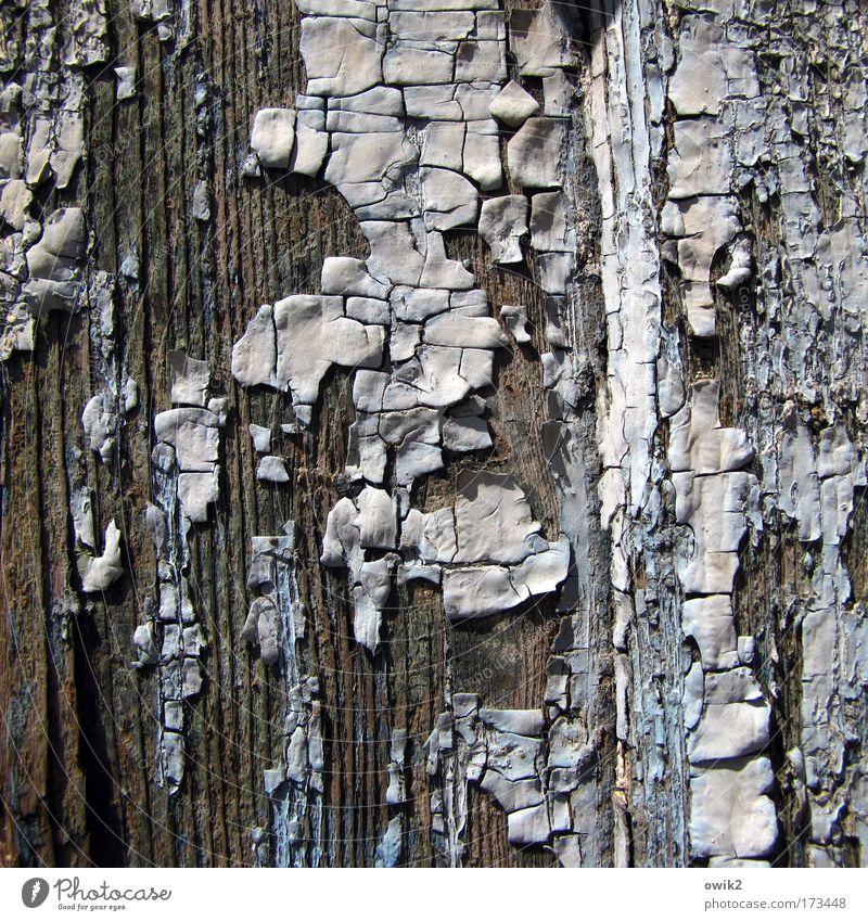 Letzter Anstrich alt blau weiß schön Holz grau Kunst braun Tür dreckig natürlich Design kaputt Wandel & Veränderung Vergänglichkeit trocken