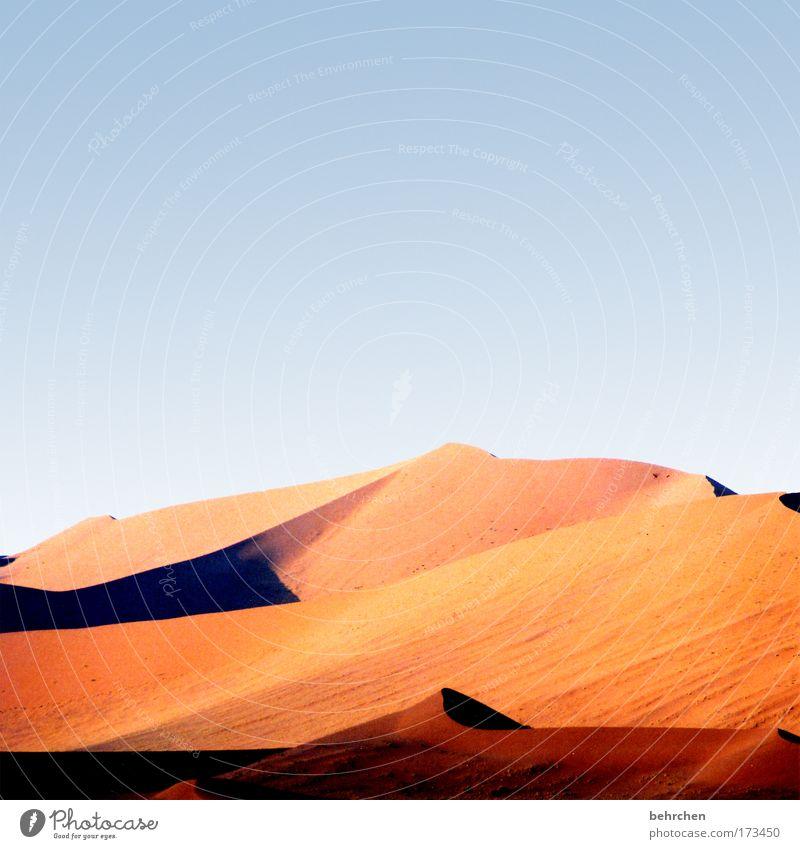 *100* jahre einsamkeit Ferien & Urlaub & Reisen Ferne Freiheit Safari Natur Landschaft Sand Wolkenloser Himmel Schönes Wetter Wüste Sossusvlei Namibia Afrika