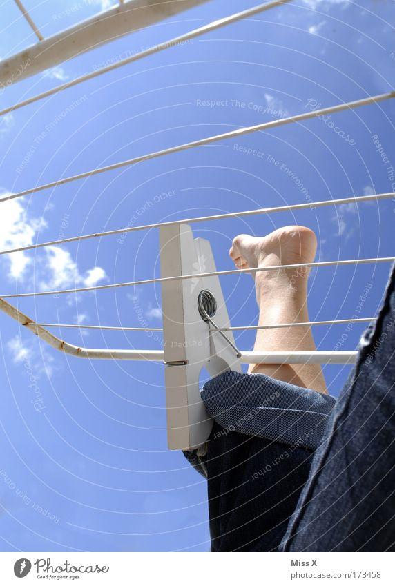 Sommerfrische Wäsche Mensch Himmel Erwachsene Garten Beine Fuß groß frisch Jeanshose Sauberkeit 18-30 Jahre Hose Schönes Wetter bizarr hängen gefangen