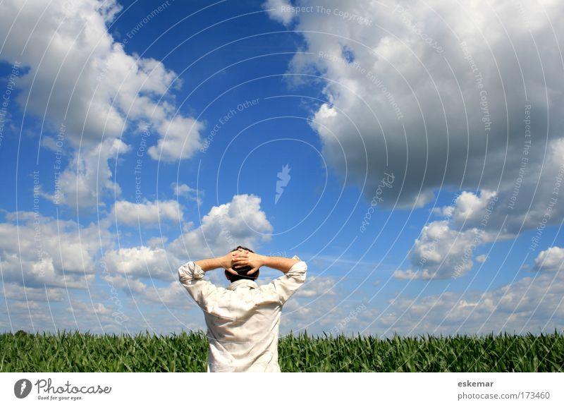 summer Farbfoto Außenaufnahme Textfreiraum oben Tag Licht Kontrast Sonnenlicht Oberkörper Rückansicht Mensch maskulin Mann Erwachsene 1 Natur Landschaft Himmel