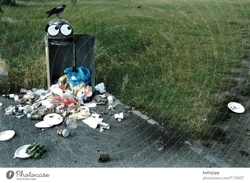 ich glaub ich muss kotzen Mensch Tier Auge Wiese Ernährung Umwelt Lebensmittel Park Vogel Mund Lifestyle Tiergruppe Gesicht Müll Teller Geschirr