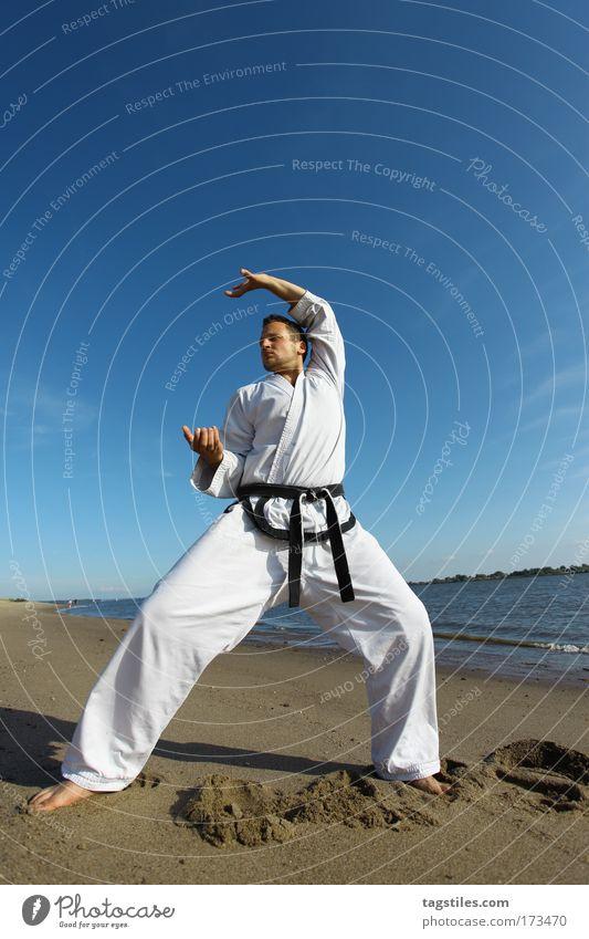 TIGERK(R)ALLE Mann schwarz Kraft Körperhaltung Typ Kontrolle kämpfen Kerl Gürtel Krallen Kampfsport Defensive Textfreiraum Karate Kämpfer