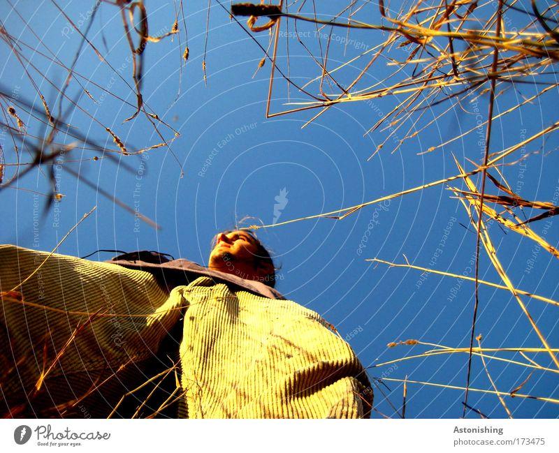 eigegrenzt Mensch Himmel Jugendliche blau Pflanze Sommer Erwachsene Gesicht gelb Umwelt Kopf Gras Haare & Frisuren Wärme warten hoch