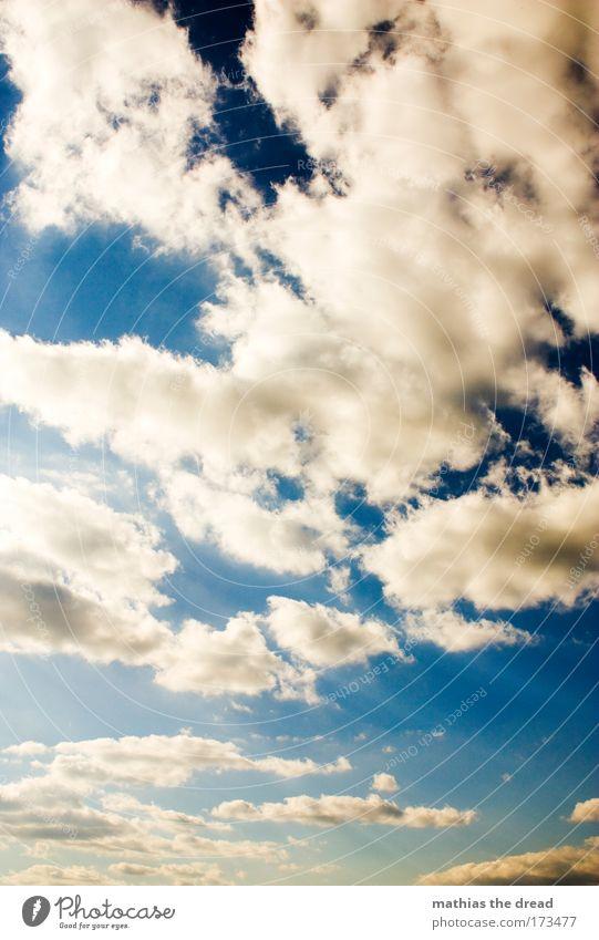 WIE IM HIMMEL Farbfoto mehrfarbig Außenaufnahme Menschenleer Morgen Tag Licht Sonnenlicht Sonnenstrahlen Sommer Winter Natur Luft Himmel nur Himmel Wolken
