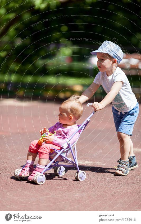 Junge, der Schwester in einem Spaziergänger drückt Sommer Garten Kind Baby Mädchen Familie & Verwandtschaft Kindheit 2 Mensch 1-3 Jahre Kleinkind Park Stadt