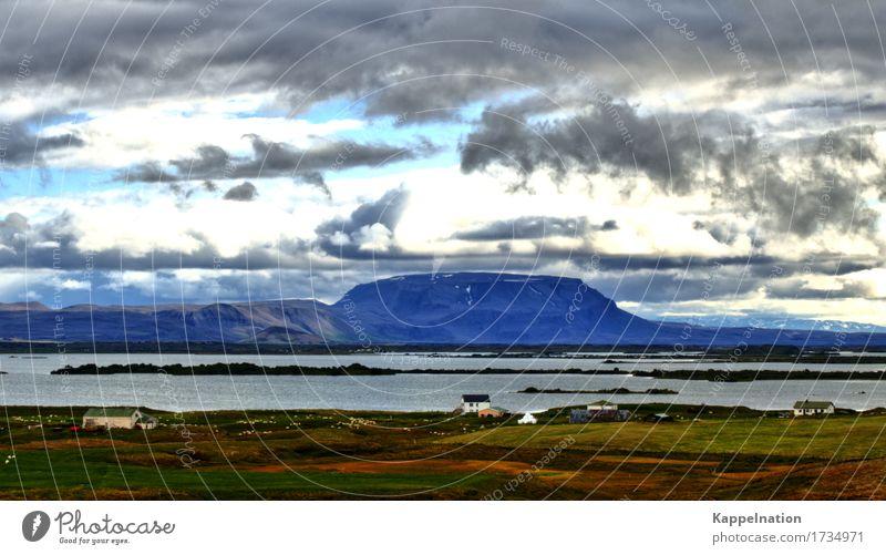 Bauernhof Island Ferien & Urlaub & Reisen Tourismus Freiheit Natur Wolken Sonnenlicht Sommer Feld Berge u. Gebirge Seeufer Europa Dorf Tierliebe Einsamkeit