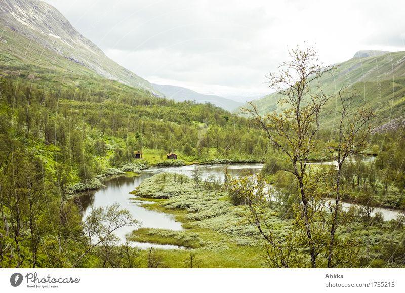 Skaitidalen Natur grün Landschaft Ferne Wald Berge u. Gebirge Ziel Optimismus schlechtes Wetter