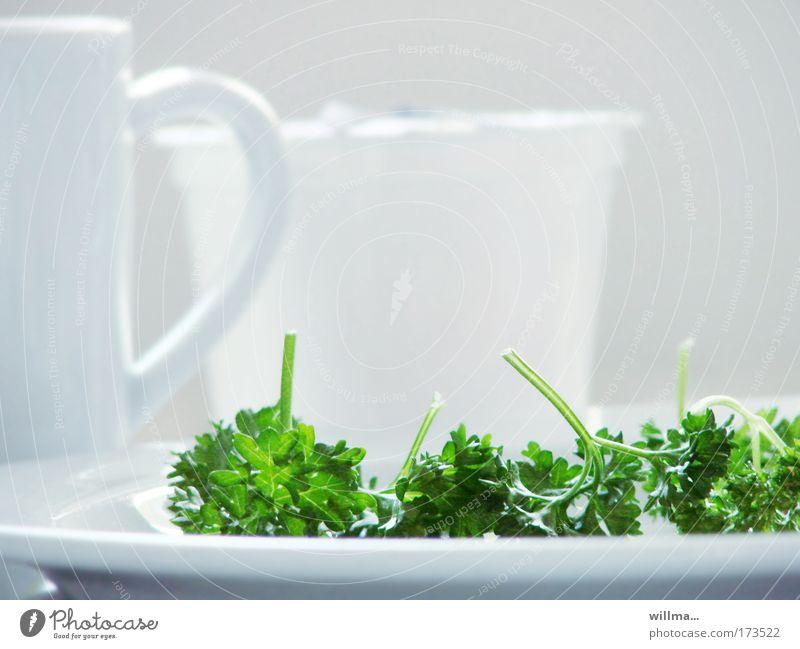 petersilie auf weißem teller - völlerei Kräuter & Gewürze Petersilie Ernährung Bioprodukte Vegetarische Ernährung Diät Fasten Teller Gesundheit